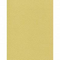 NC204 Kosome Mustard Yellow Cardstock 8.5x11
