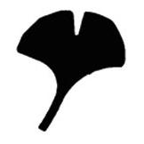 PN063 Large Ginkgo Leaf Punch - Hanko Designs - www.HankoDesigns.com