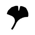 PN062 Medium Ginkgo Leaf Punch - Hanko Designs - www.HankoDesigns.com