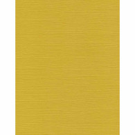 NC242 Golden Yellow Tsumugi Cardstock Paper - www.HankoDesigns.com