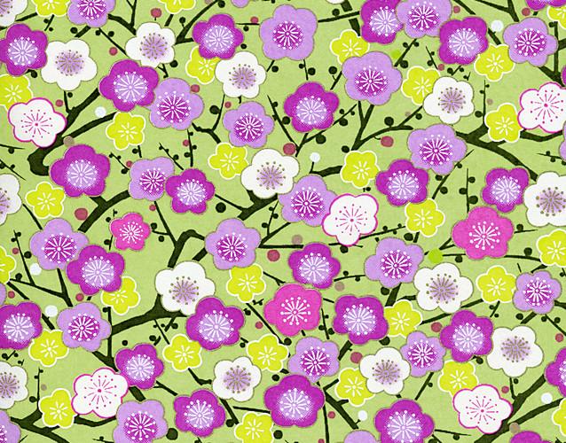 RKB8779 Summer Plum Blossom Branches Japanese Washi Paper - Hanko Designs - www.HankoDesigns.com 2014