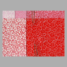 PC312X Pink Sakura Assortment Washi Paper Pack Cherry Blossom 2017
