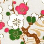 RKB2891 Spring Plum Branches Washi