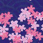RTBSD14 Purple Sakura Rain Washi - www.HankoDesigns.com